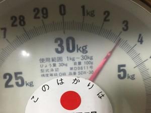 測りで重さを計量したら3.2KGでした。