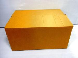 フタを閉じた状態のダンボール箱。