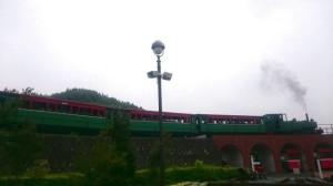 白い空と高架を走る緑色の蒸気機関車が写っている